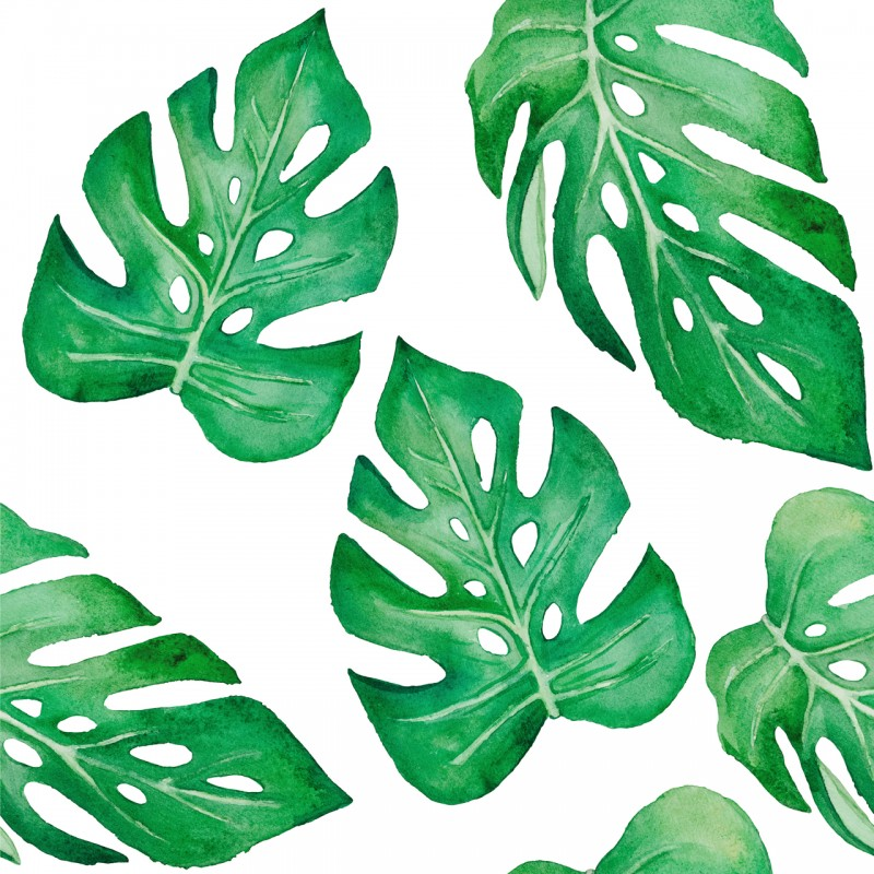 Дизайнерские обои Monstera Leaf